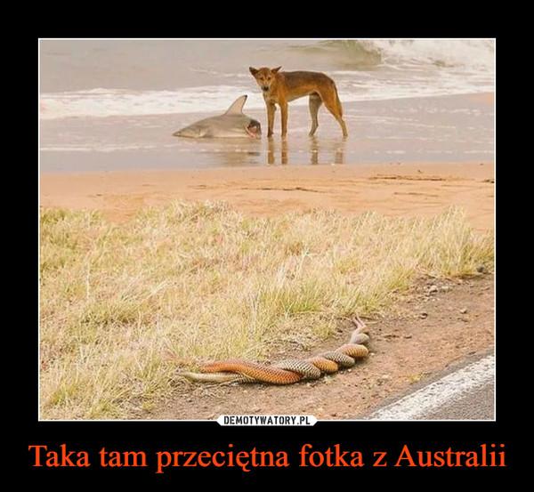 Taka tam przeciętna fotka z Australii –
