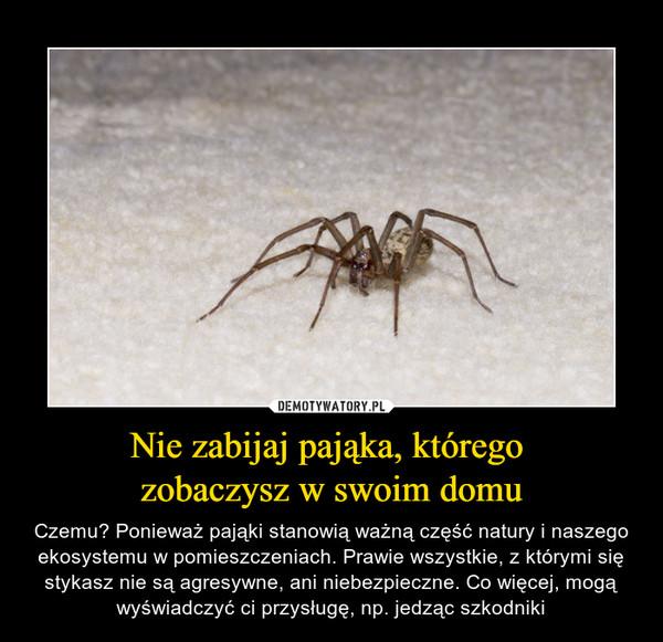 Nie zabijaj pająka, którego zobaczysz w swoim domu – Czemu? Ponieważ pająki stanowią ważną część natury i naszego ekosystemu w pomieszczeniach. Prawie wszystkie, z którymi się stykasz nie są agresywne, ani niebezpieczne. Co więcej, mogą wyświadczyć ci przysługę, np. jedząc szkodniki
