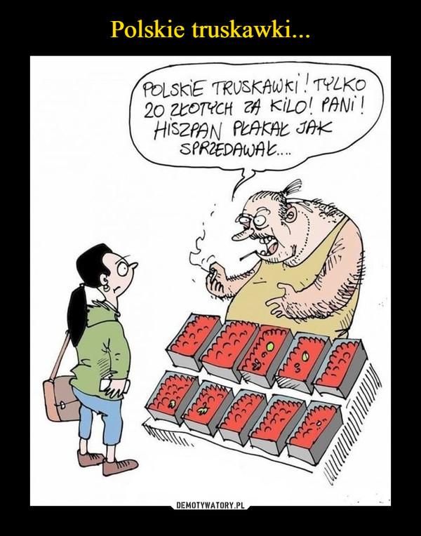 –  polskie truskawki tylko 20 złotych za kilo! pani! hiszpan płakał jak sprzedawał