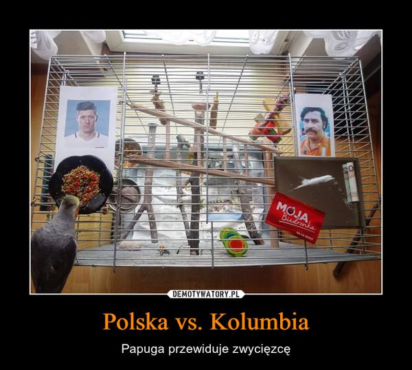 Polska vs. Kolumbia – Papuga przewiduje zwycięzcę