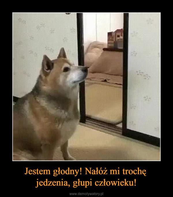 Jestem głodny! Nałóż mi trochę jedzenia, głupi człowieku! –