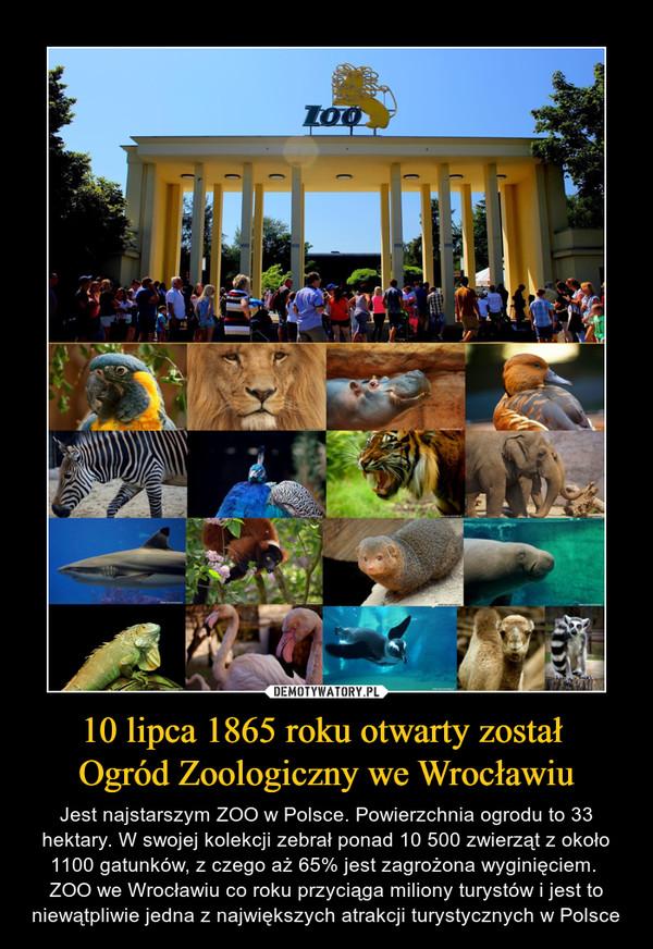 10 lipca 1865 roku otwarty został Ogród Zoologiczny we Wrocławiu – Jest najstarszym ZOO w Polsce. Powierzchnia ogrodu to 33 hektary. W swojej kolekcji zebrał ponad 10 500 zwierząt z około 1100 gatunków, z czego aż 65% jest zagrożona wyginięciem. ZOO we Wrocławiu co roku przyciąga miliony turystów i jest to niewątpliwie jedna z największych atrakcji turystycznych w Polsce