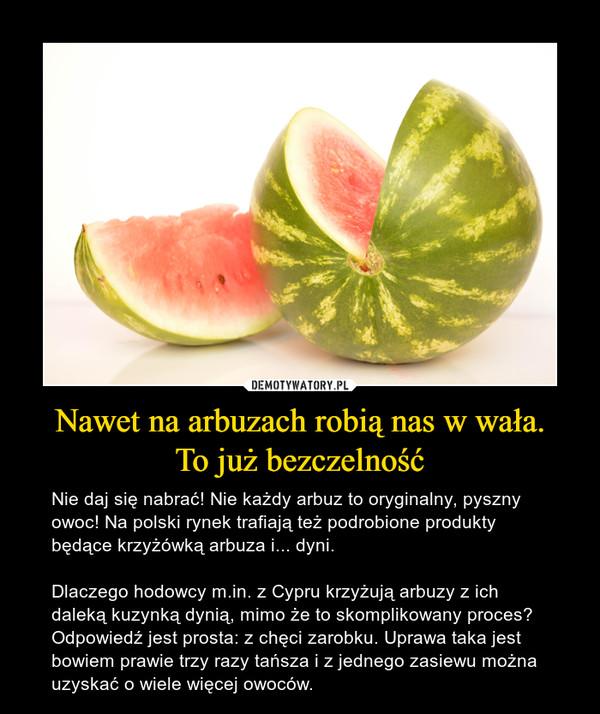 Nawet na arbuzach robią nas w wała.To już bezczelność – Nie daj się nabrać! Nie każdy arbuz to oryginalny, pyszny owoc! Na polski rynek trafiają też podrobione produkty będące krzyżówką arbuza i... dyni.Dlaczego hodowcy m.in. z Cypru krzyżują arbuzy z ich daleką kuzynką dynią, mimo że to skomplikowany proces? Odpowiedź jest prosta: z chęci zarobku. Uprawa taka jest bowiem prawie trzy razy tańsza i z jednego zasiewu można uzyskać o wiele więcej owoców.
