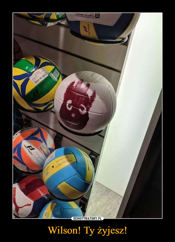 Wilson! Ty żyjesz! –