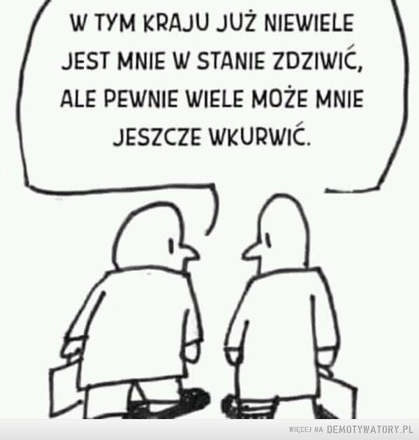 Polska –  W TYM KRAJU JUŻ NIEWIELE JEST MNIE W STANIE ZDZIWIĆ, ALE PEWNIE WIELE MOŻE MNIE JESZCZE WKURWIĆ