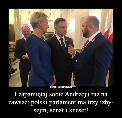 I zapamiętaj sobie Andrzeju raz na zawsze: polski parlament ma trzy izby- sejm, senat i kneset!