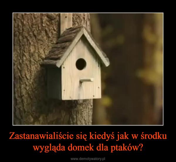 Zastanawialiście się kiedyś jak w środku wygląda domek dla ptaków? –