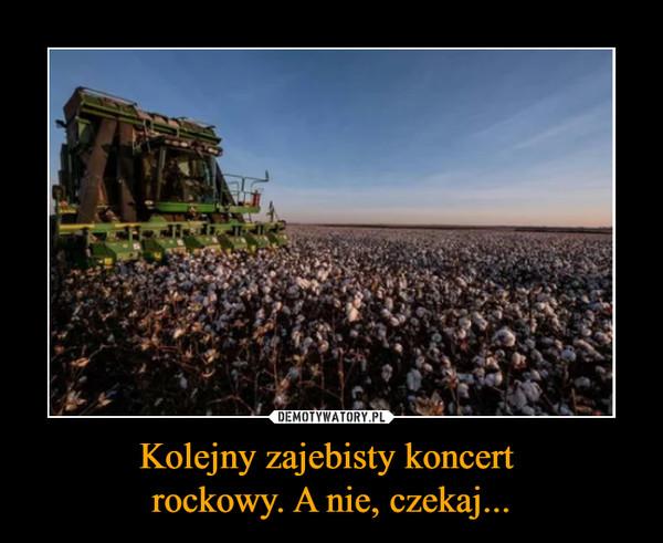 Kolejny zajebisty koncert rockowy. A nie, czekaj... –