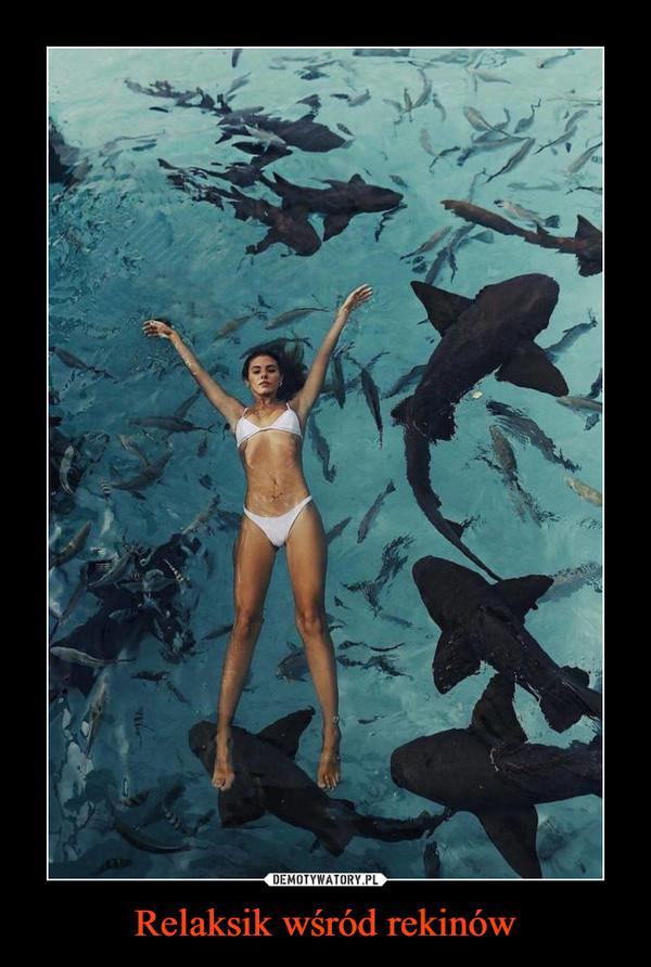 Relaksik wśród rekinów –