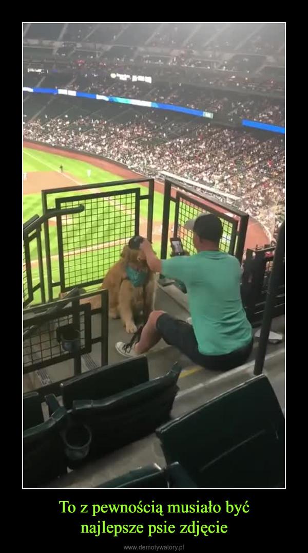 To z pewnością musiało byćnajlepsze psie zdjęcie –