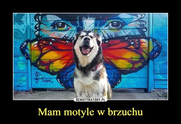 Mam motyle w brzuchu –