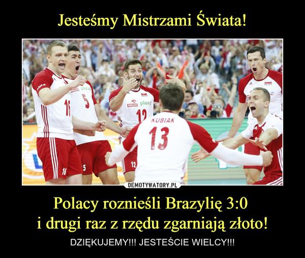 Polacy roznieśli Brazylię 3:0 i drugi raz z rzędu zgarniają złoto! – DZIĘKUJEMY!!! JESTEŚCIE WIELCY!!!