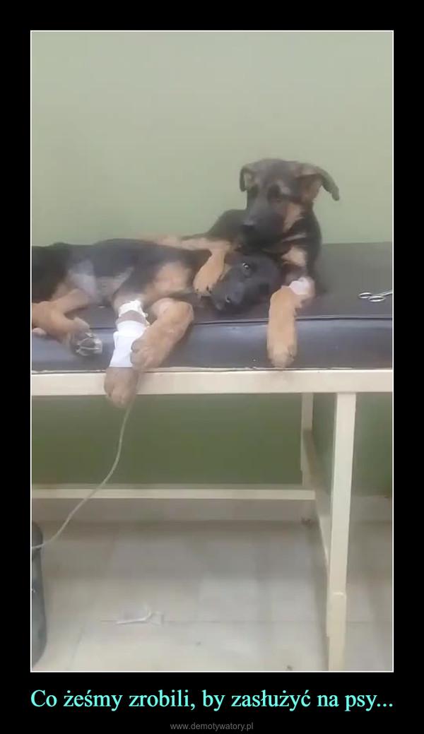 Co żeśmy zrobili, by zasłużyć na psy... –