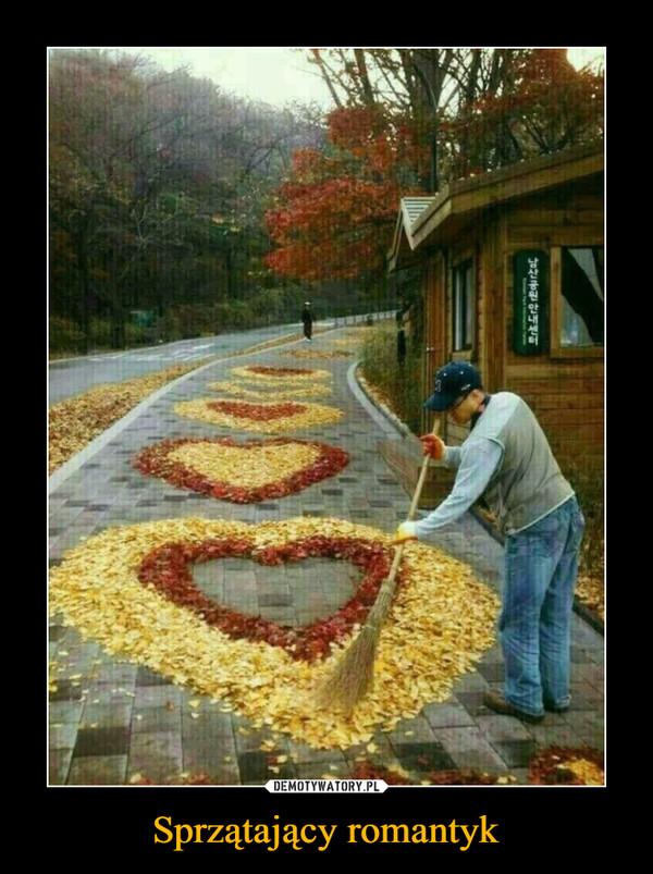 Sprzątający romantyk –