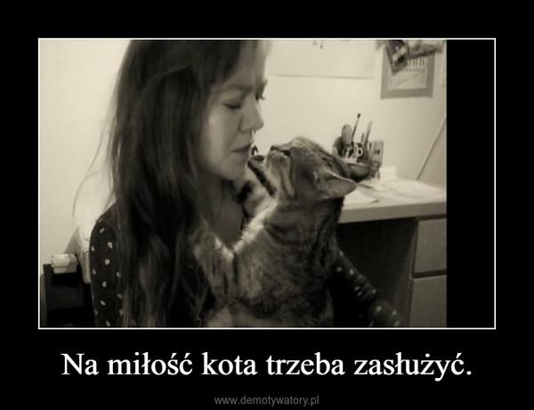 Na miłość kota trzeba zasłużyć. –