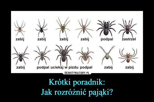 Krótki poradnik:Jak rozróżnić pająki? –  zabijzabijzabijzabijpodpal zastrzelzabi podpal uciekaj w pizdu podpalzabijzabij