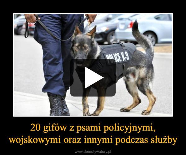 20 gifów z psami policyjnymi, wojskowymi oraz innymi podczas służby –