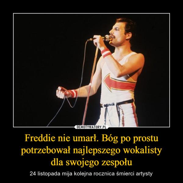 Freddie nie umarł. Bóg po prostu potrzebował najlepszego wokalistydla swojego zespołu – 24 listopada mija kolejna rocznica śmierci artysty