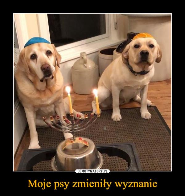 Moje psy zmieniły wyznanie –