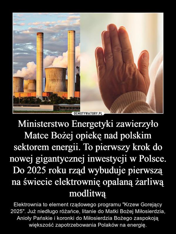 """Ministerstwo Energetyki zawierzyło Matce Bożej opiekę nad polskim sektorem energii. To pierwszy krok do nowej gigantycznej inwestycji w Polsce. Do 2025 roku rząd wybuduje pierwszą na świecie elektrownię opalaną żarliwą modlitwą – Elektrownia to element rządowego programu """"Krzew Gorejący 2025"""". Już niedługo różańce, litanie do Matki Bożej Miłosierdzia, Anioły Pańskie i koronki do Miłosierdzia Bożego zaspokoją większość zapotrzebowania Polaków na energię."""