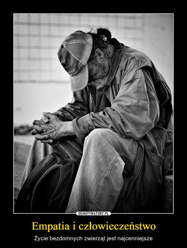 Empatia i człowieczeństwo – Życie bezdomnych zwierząt jest najcenniejsze