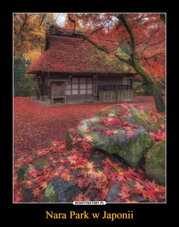 Nara Park w Japonii –
