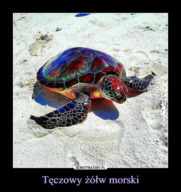 Tęczowy żółw morski –