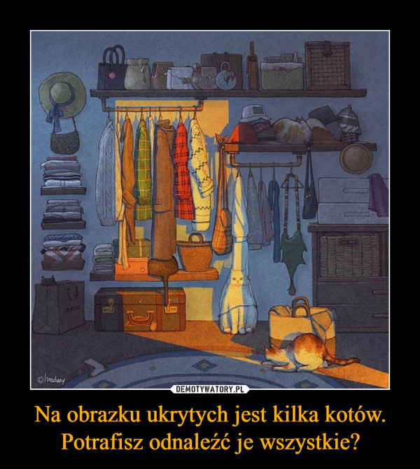 Na obrazku ukrytych jest kilka kotów. Potrafisz odnaleźć je wszystkie? –