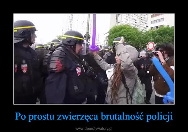 Po prostu zwierzęca brutalność policji –