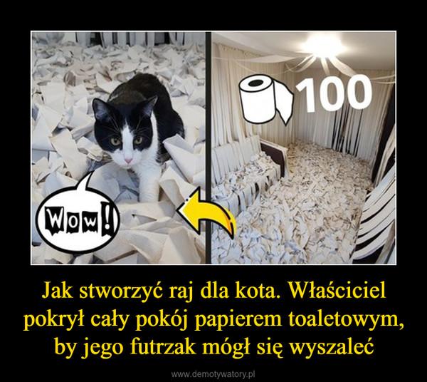 Jak stworzyć raj dla kota. Właściciel pokrył cały pokój papierem toaletowym, by jego futrzak mógł się wyszaleć –