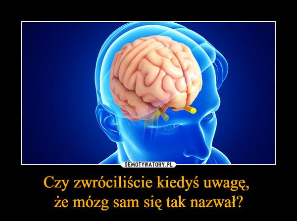 Czy zwróciliście kiedyś uwagę, że mózg sam się tak nazwał? –