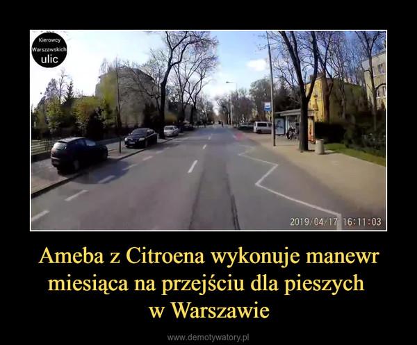 Ameba z Citroena wykonuje manewr miesiąca na przejściu dla pieszych w Warszawie –