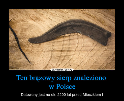 Ten brązowy sierp znaleziono  w Polsce