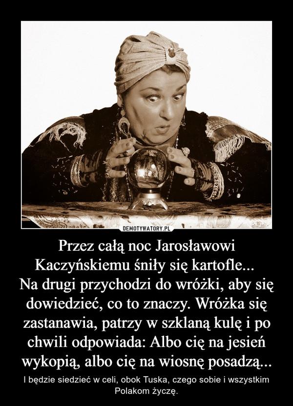 Przez całą noc Jarosławowi Kaczyńskiemu śniły się kartofle... Na drugi przychodzi do wróżki, aby się dowiedzieć, co to znaczy. Wróżka się zastanawia, patrzy w szklaną kulę i po chwili odpowiada: Albo cię na jesień wykopią, albo cię na wiosnę posadzą... – I będzie siedzieć w celi, obok Tuska, czego sobie i wszystkim Polakom życzę.