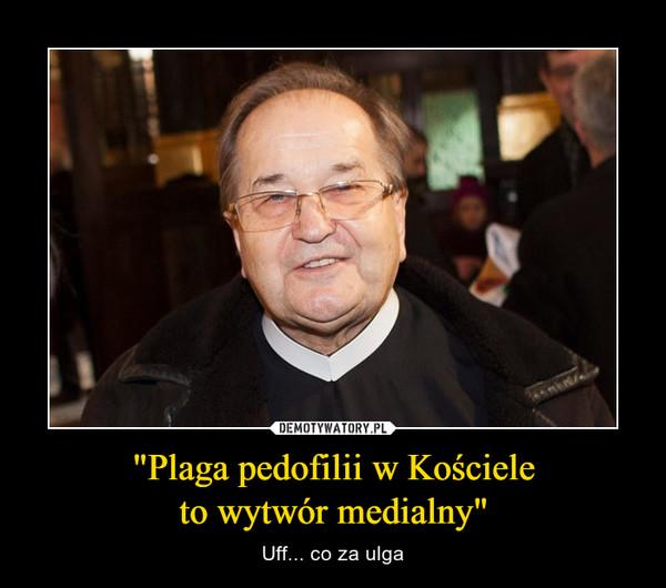 """""""Plaga pedofilii w Kościeleto wytwór medialny"""" – Uff... co za ulga"""