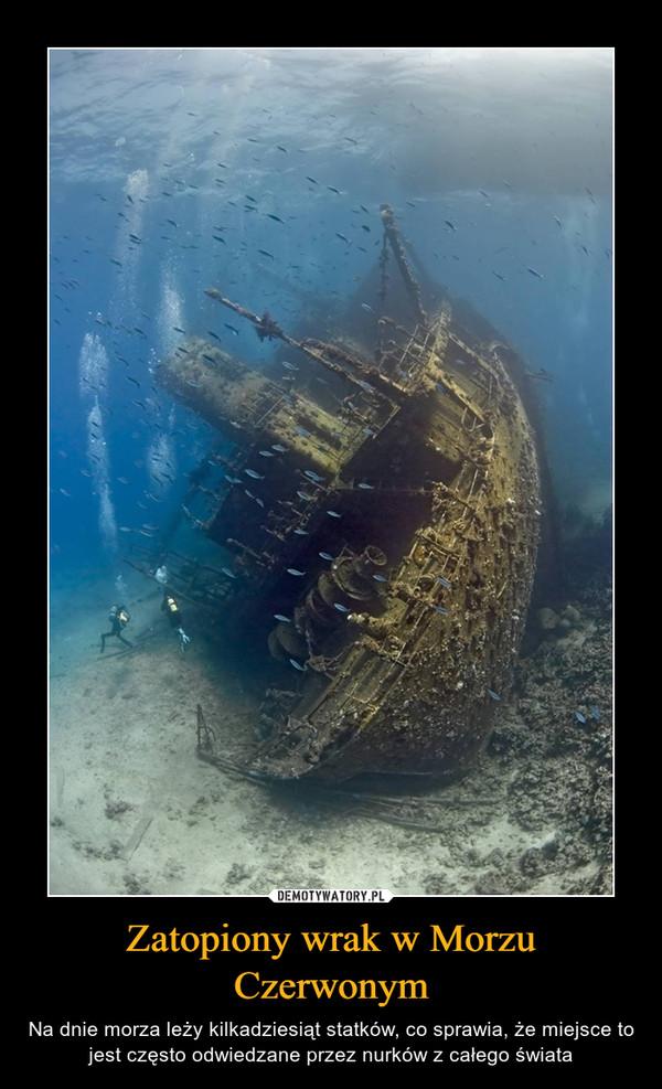 Zatopiony wrak w Morzu Czerwonym – Na dnie morza leży kilkadziesiąt statków, co sprawia, że miejsce to jest często odwiedzane przez nurków z całego świata