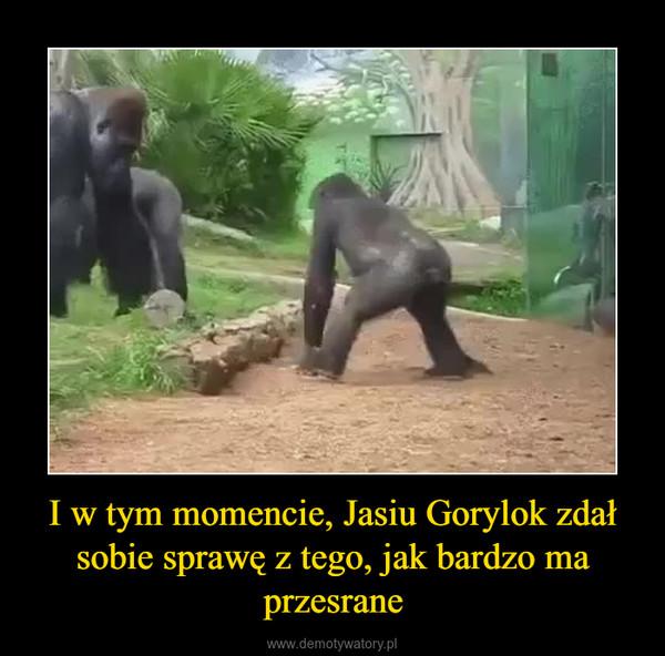 I w tym momencie, Jasiu Gorylok zdał sobie sprawę z tego, jak bardzo ma przesrane –
