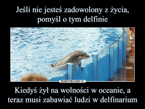 Kiedyś żył na wolności w oceanie, a teraz musi zabawiać ludzi w delfinarium –