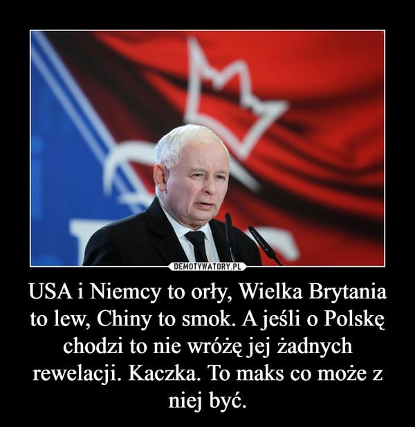 USA i Niemcy to orły, Wielka Brytania to lew, Chiny to smok. A jeśli o Polskę chodzi to nie wróżę jej żadnych rewelacji. Kaczka. To maks co może z niej być. –