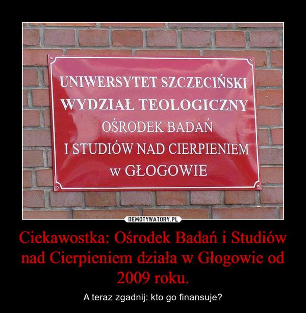 Ciekawostka: Ośrodek Badań i Studiów nad Cierpieniem działa w Głogowie od 2009 roku. – A teraz zgadnij: kto go finansuje?