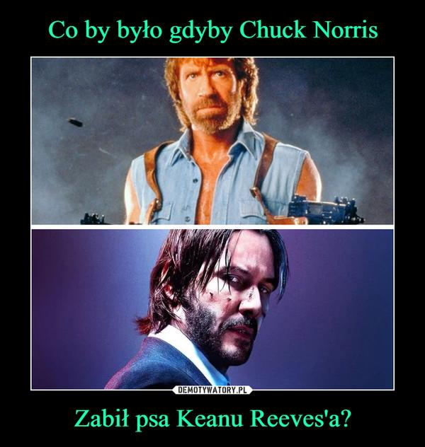 Zabił psa Keanu Reeves'a? –