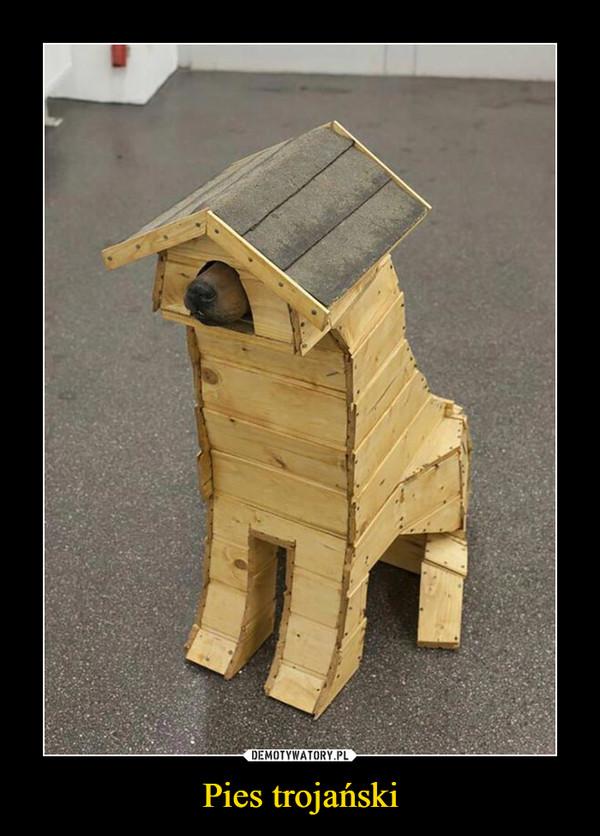 Pies trojański –
