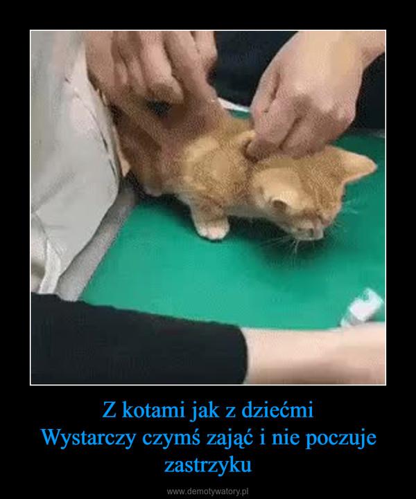 Z kotami jak z dziećmiWystarczy czymś zająć i nie poczuje zastrzyku –