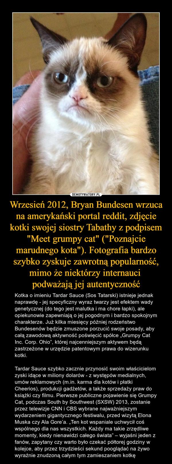 """Wrzesień 2012, Bryan Bundesen wrzuca na amerykański portal reddit, zdjęcie kotki swojej siostry Tabathy z podpisem """"Meet grumpy cat"""" (""""Poznajcie marudnego kota""""). Fotografia bardzo szybko zyskuje zawrotną popularność, mimo że niektórzy internauci podważają jej autentyczność – Kotka o imieniu Tardar Sauce (Sos Tatarski) istnieje jednak naprawdę - jej specyficzny wyraz twarzy jest efektem wady genetycznej (do tego jest malutka i ma chore łapki), ale opiekunowie zapewniają o jej pogodnym i bardzo spokojnym charakterze. Już kilka miesięcy później rodzeństwo Bundesenów będzie zmuszone porzucić swoje posady, aby całą zawodową aktywność poświęcić spółce """"Grumpy Cat Inc. Corp. Ohio"""", której najcenniejszym aktywem będą zastrzeżone w urzędzie patentowym prawa do wizerunku kotki. Tardar Sauce szybko zacznie przynosić swoim właścicielom zyski idące w miliony dolarów - z występów medialnych, umów reklamowych (m.in. karma dla kotów i płatki Cheerios), produkcji gadżetów, a także sprzedaży praw do książki czy filmu. Pierwsze publiczne pojawienie się Grumpy Cat, podczas South by Southwest (SXSW) 2013, zostanie przez telewizje CNN i CBS wybrane najważniejszym wydarzeniem gigantycznego festiwalu, przed wizytą Elona Muska czy Ala Gore'a. """"Ten kot wspaniale uchwycił coś wspólnego dla nas wszystkich. Każdy ma takie zrzędliwe momenty, kiedy nienawidzi całego świata"""" – wyjaśni jeden z fanów, zapytany czy warto było czekać półtorej godziny w kolejce, aby przez trzydzieści sekund pooglądać na żywo wyraźnie znudzoną całym tym zamieszaniem kotkę"""