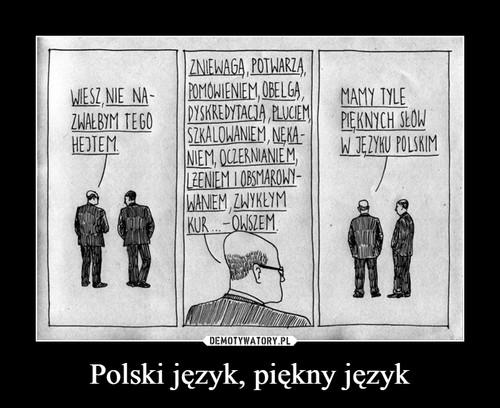 Polski język, piękny język