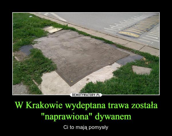 """W Krakowie wydeptana trawa została """"naprawiona"""" dywanem – Ci to mają pomysły"""