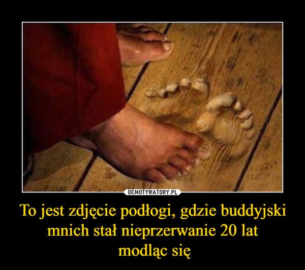 https://img1.dmty.pl//uploads/201909/1568448831_dkozlt_600.jpg