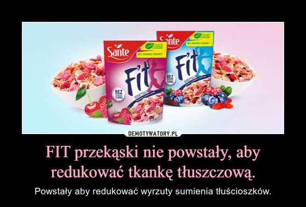FIT przekąski nie powstały, aby redukować tkankę tłuszczową. – Powstały aby redukować wyrzuty sumienia tłuścioszków.