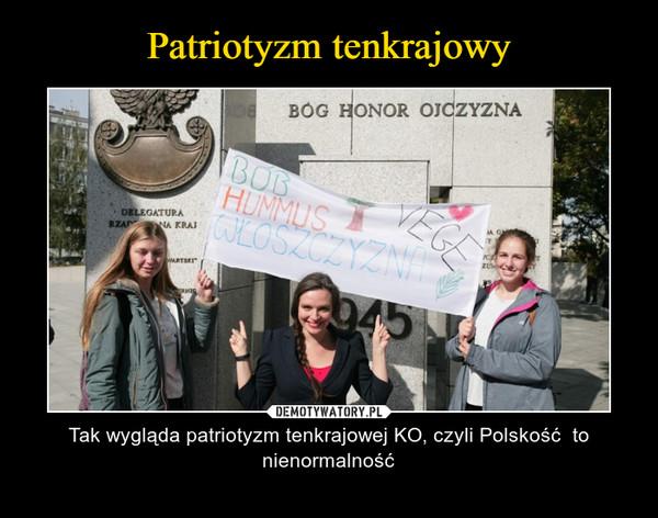 – Tak wygląda patriotyzm tenkrajowej KO, czyli Polskość  to nienormalność