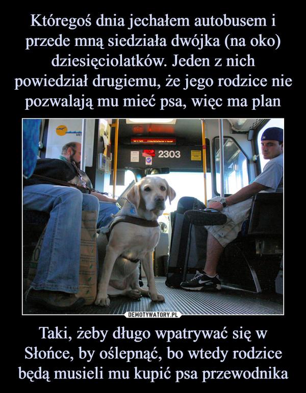 Taki, żeby długo wpatrywać się w Słońce, by oślepnąć, bo wtedy rodzice będą musieli mu kupić psa przewodnika –
